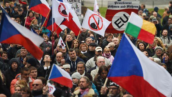 Demonstracja antyimigracyjna w Czechach - Sputnik Polska