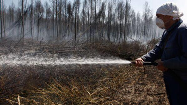 Walka z pożarami lasów - Sputnik Polska