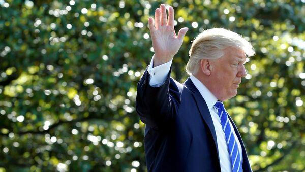 Prezydent USA Donald Trump w Waszyngtonie - Sputnik Polska