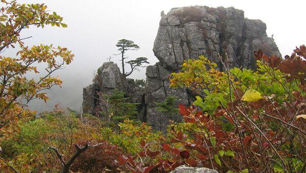 Góra Jiri-san w Korei Południowej - Sputnik Polska
