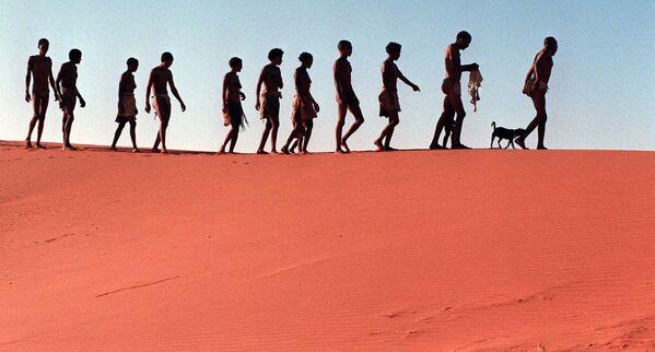 Pustynny krajobraz Kalahari w RPA - Sputnik Polska