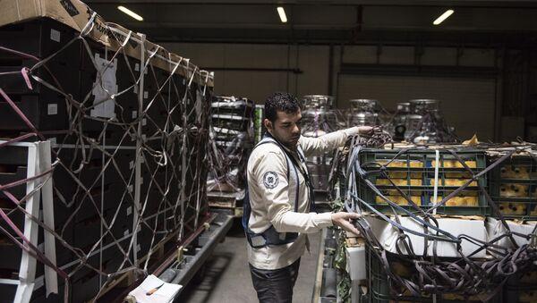 Pracownik w magazynie terminalu międzynarodowego lotniska Hamad w Dosze - Sputnik Polska