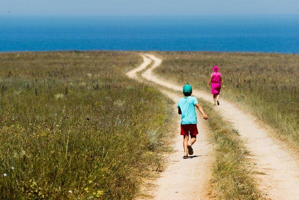 Na terytorium parku zachowały się prawdziwe stepy, największe pod wględem powierzchni na Krymie. Rośnie tu sześć gatunków ostnicy wpisanych do Czerwonej Księgi. - Sputnik Polska