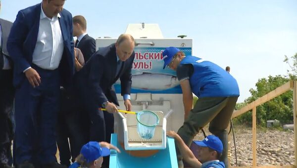 Władimir Putin na Bajkale - Sputnik Polska