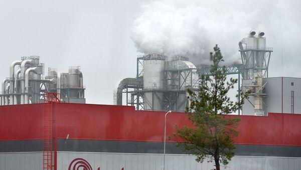 Fabryka Kastamonu w specjalnej strefie ekonomicznej Ałabuga w Tatarstanie - Sputnik Polska