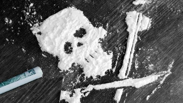 Proszek kokainy - Sputnik Polska