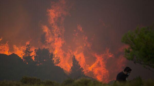 Pożar lasów w Grecji - Sputnik Polska