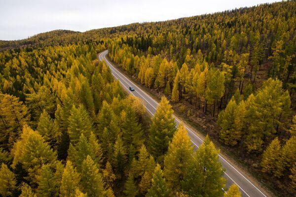 Droga w górach w Republice Tuwa - Sputnik Polska