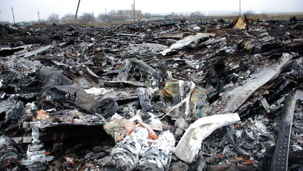 Miejsce katastrofy malezyjskiego Boeinga 777 - Sputnik Polska