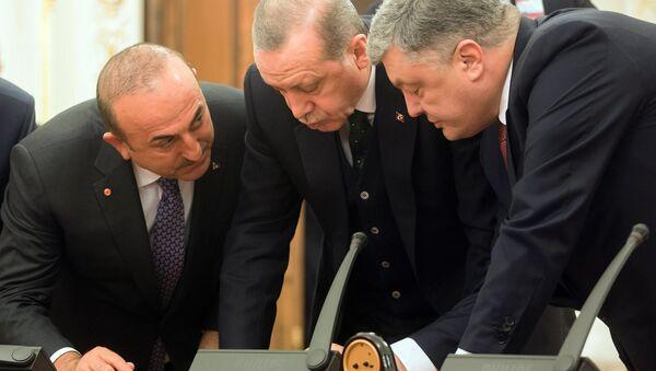 Prezydent Turcji Tayyip Erodgan i prezydent Ukrainy Petro Poroszenko przed oficjalnym spotkaniem - Sputnik Polska