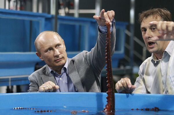 Władimir Putin we Władywostoku - Sputnik Polska