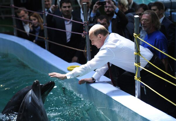 Władimir Putin w oceanarium - Sputnik Polska
