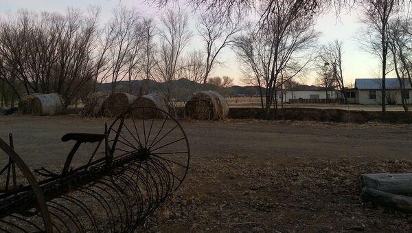 Farma w Arizonie - Sputnik Polska
