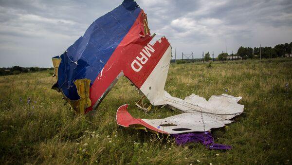 Szczątki samolotu Boeing-777 w okolicach Szachtarśka - Sputnik Polska