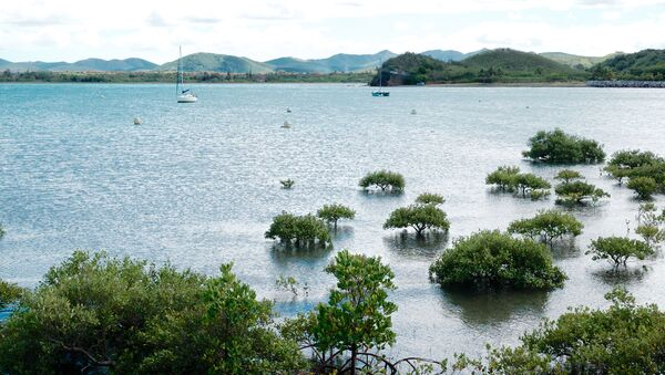 Linia brzegowa komuny Kumak w Nowej Kaledonii, Francja - Sputnik Polska