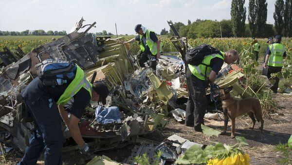 Prace poszukiwawcze na miejscu katastrofy Boeinga-777 - Sputnik Polska