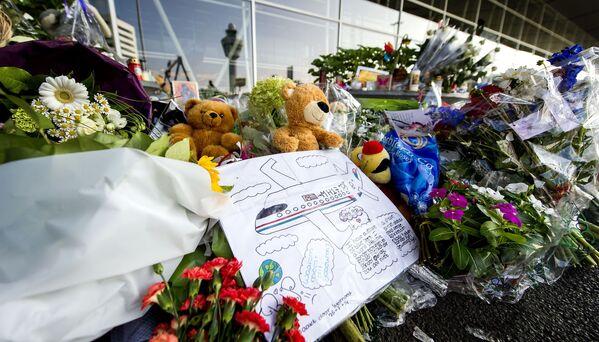 Kwiaty i zabawki na lotnisku Schiphol, Amsterdam, Holandia - Sputnik Polska