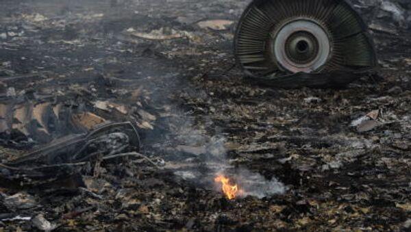Katastrofa malezyjskiego boeinga w obwodzie donieckim - Sputnik Polska