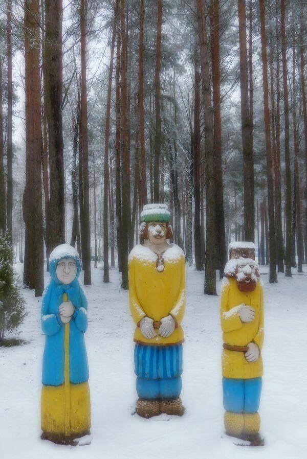 Park leśny w okolicach białoruskiego miasta Rohaczów. - Sputnik Polska