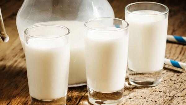 Mleko - Sputnik Polska