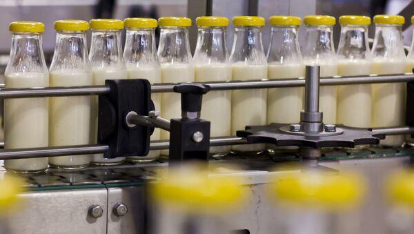 Taśma do produkcji mleka - Sputnik Polska