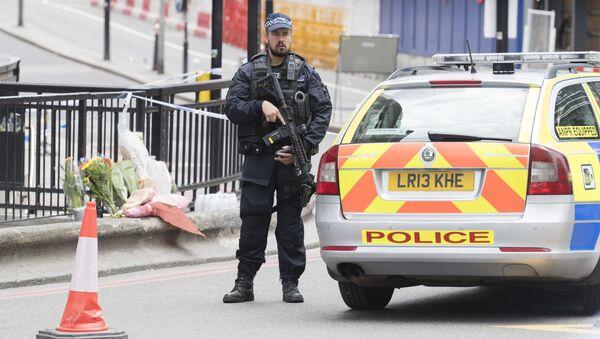 Policjant w Londynie - Sputnik Polska