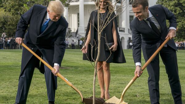 Melania Trump, Donald Trump i Emmanuel Macron - Sputnik Polska