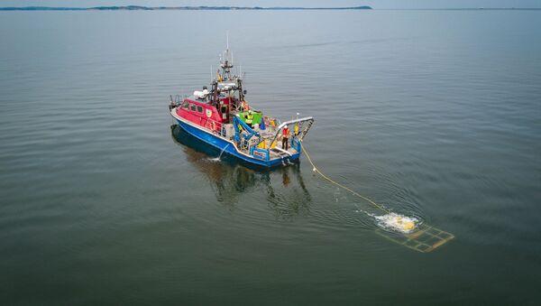 Badanie morskiego dna za pomocą zdalnie sterowanego aparatu niedaleko Lubmina, Niemcy - Sputnik Polska