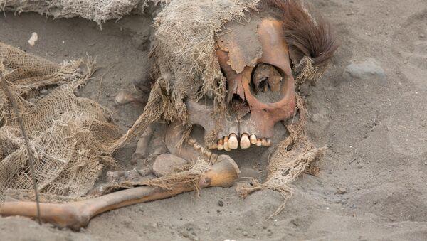 Wykopaliska archeologiczne w miejscu masowego pochówku wykonanego przed przedstawicieli kultury Chima w Peru - Sputnik Polska