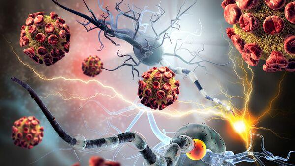 Komórki nowotworowe i nerwowe - Sputnik Polska