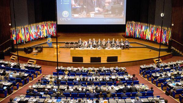 Otwarcie Konferencji Państw Stron Konwencji o zakazie broni chemicznej w Hadze - Sputnik Polska