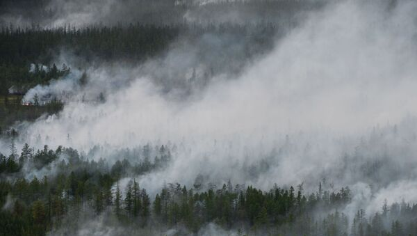 Pożary lasów w Jakucji - Sputnik Polska