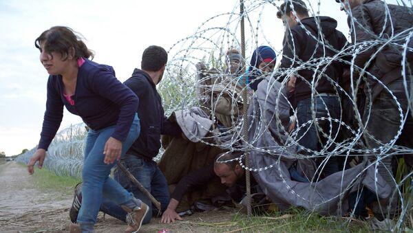 Grupa imigrantów przekracza węgierską granicę ze strony Serbii - Sputnik Polska