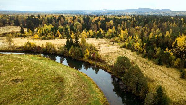 Las w barwach jesieni w Kraju Permskim  - Sputnik Polska