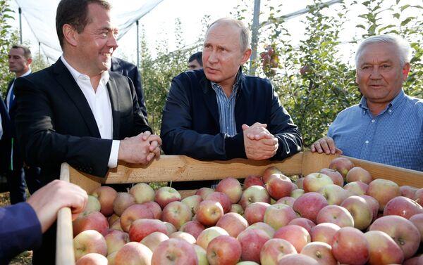 Władimir Putin i Dmitrij Miedwiediew w Kraju Stawropolskim - Sputnik Polska