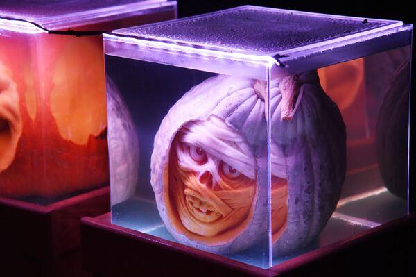 Dynia w formie strasznej twarzy na prezentacji w USA - Sputnik Polska