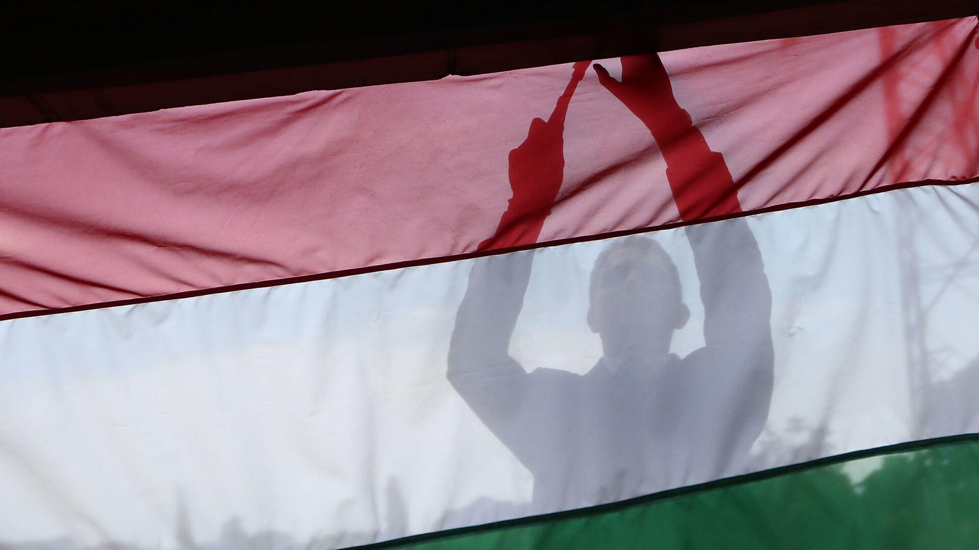 Flaga Węgier. Zdjęcie archiwalne - Sputnik Polska, 1920, 09.10.2021