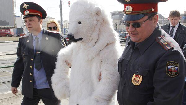 Policjanci aresztowali niedźwiedzia polarnego - Sputnik Polska