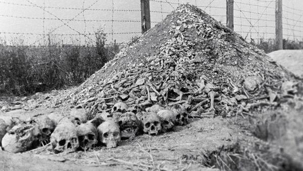 Ludzkie kości w obozie koncentracyjnym Majdanek - Sputnik Polska