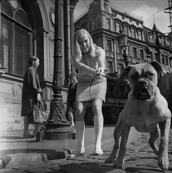 Dziewczyna z psem w Rydze, 1968 rok - Sputnik Polska