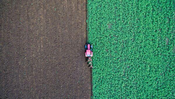 Rolnik w traktorze na polu w Niemczech - Sputnik Polska