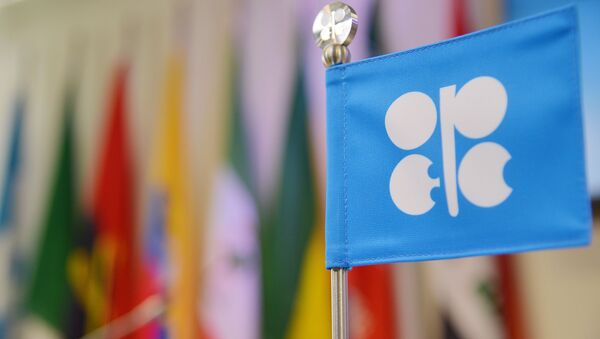 Flaga OPEC na posiedzeniu w Wiedniu - Sputnik Polska