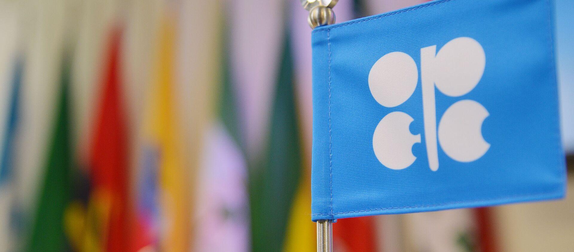 Flaga OPEC na posiedzeniu w Wiedniu - Sputnik Polska, 1920, 05.01.2021
