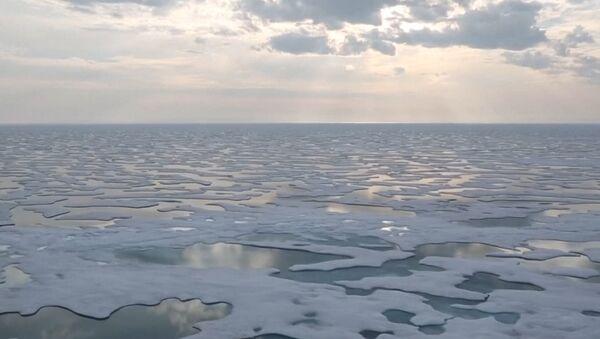 Szybkość topnienia lodu na Antarktydzie osiągnęła rekordowy poziom - Sputnik Polska