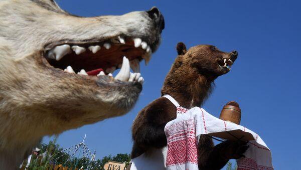 Manekiny wilka i niedźwiedzia w Kazaniu - Sputnik Polska