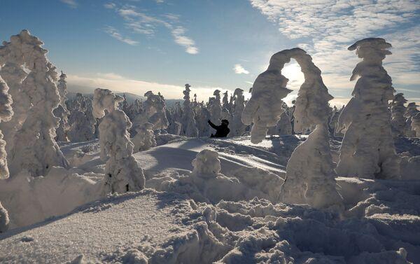 Mężczyzna robi sobie selfie między pokrytymi śniegiem drzewami w Szczyrku, Polska - Sputnik Polska