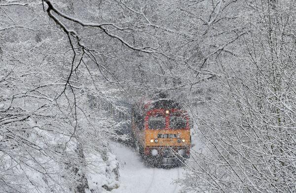 Pociąg na tle zimowego pejzażu, Węgry - Sputnik Polska