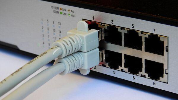 Dwa kable sieciowe - Sputnik Polska