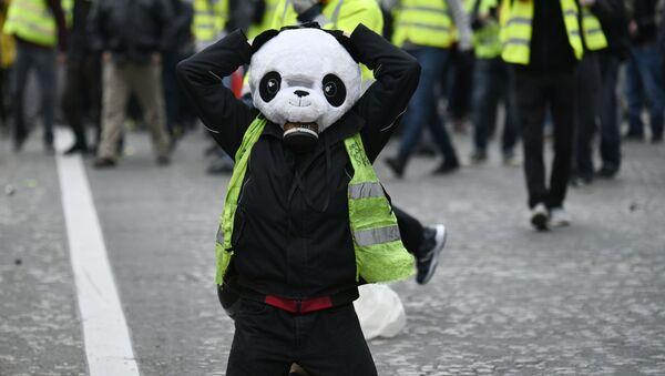 Uczestnik akcji protestu żółtych kamizelek w Paryżu - Sputnik Polska