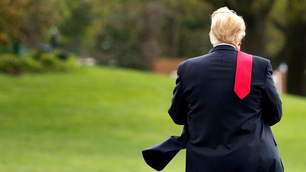 Prezydent Stanów Zjednoczonych Donald Trump - Sputnik Polska